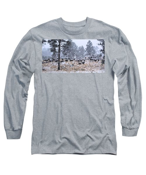 January Snow Long Sleeve T-Shirt