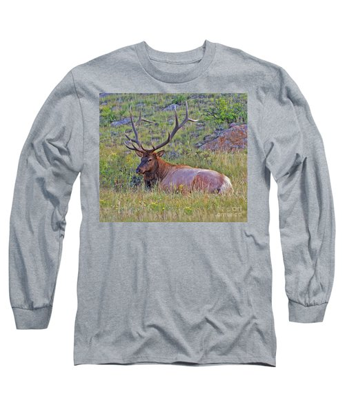 King Of The Meadow Long Sleeve T-Shirt