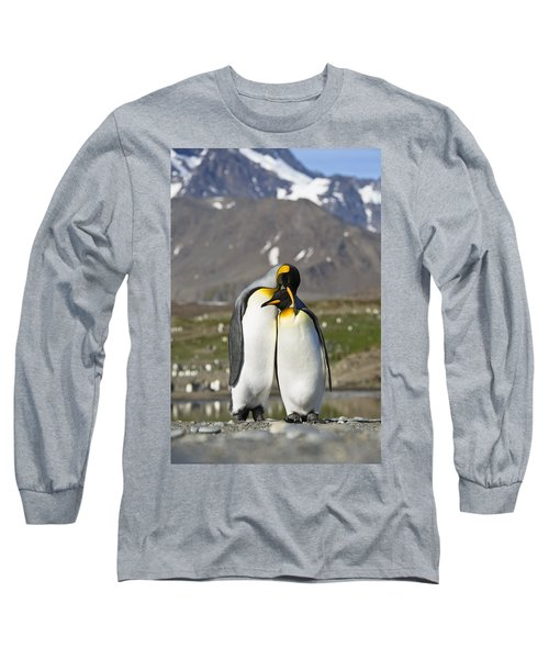 King Penguins Courting St Andrews Bay Long Sleeve T-Shirt