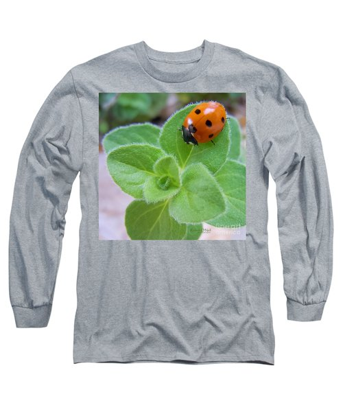 Long Sleeve T-Shirt featuring the photograph Ladybug And Oregano by Robert ONeil