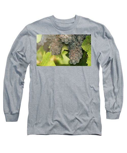 Late Harvest Sunshine  Long Sleeve T-Shirt