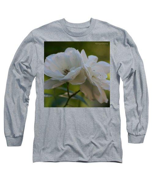 Lean On Me White Roses In Anna's Gardens Long Sleeve T-Shirt