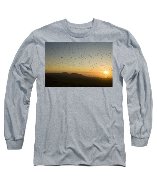 Least Auklets, Returning To Their Nest Long Sleeve T-Shirt by Brian Guzzetti