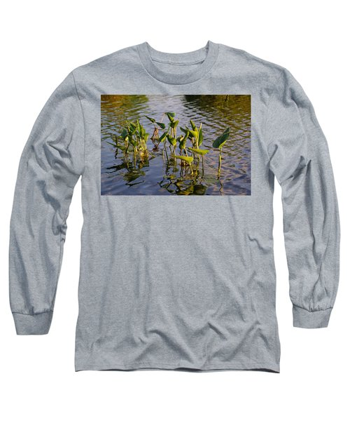 Lillies In Evening Glory Long Sleeve T-Shirt