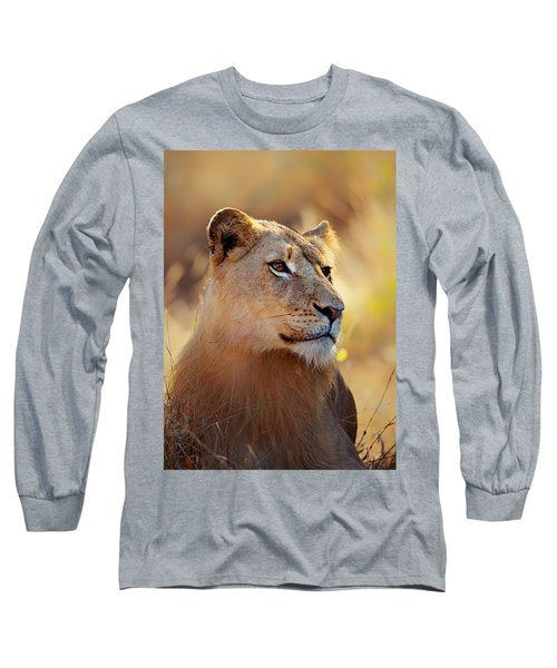 Lioness Portrait Lying In Grass Long Sleeve T-Shirt