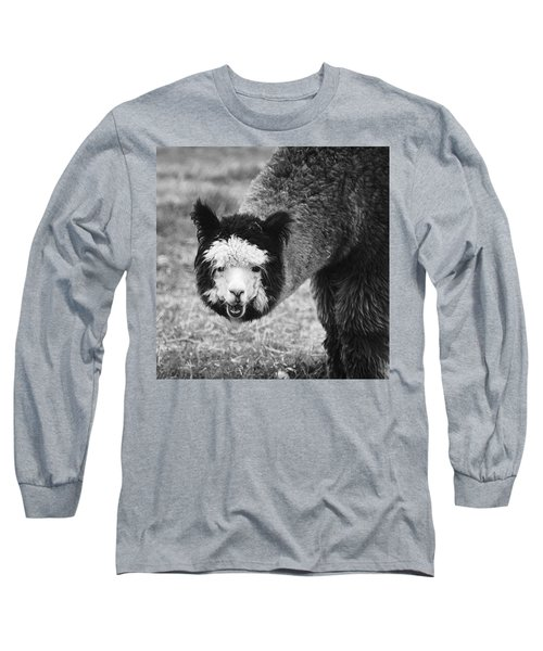 Llama Long Sleeve T-Shirt by Yulia Kazansky