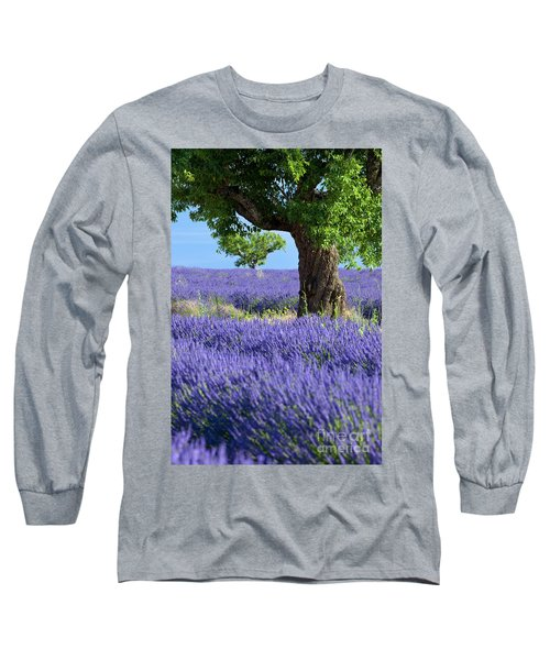 Lone Tree In Lavender Long Sleeve T-Shirt