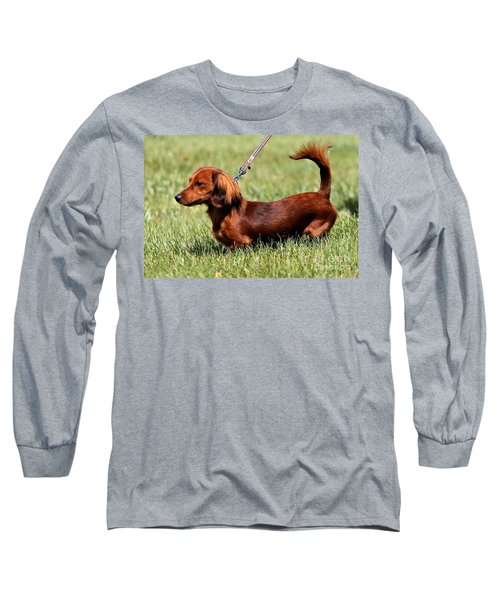Long Haired Dachshund Long Sleeve T-Shirt