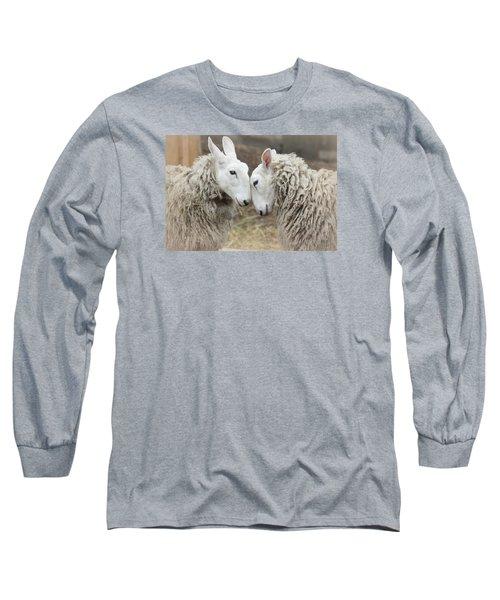 Love Me Sweet Long Sleeve T-Shirt