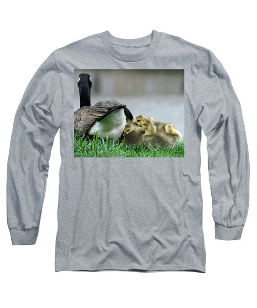 Mama And Goslings Long Sleeve T-Shirt by Lisa Phillips