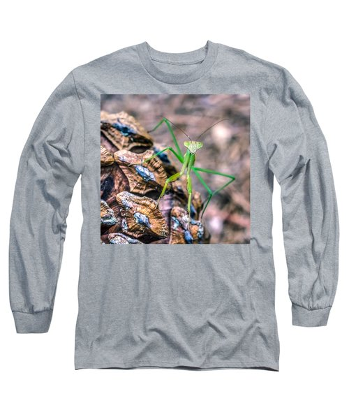 Mantis On A Pine Cone Long Sleeve T-Shirt