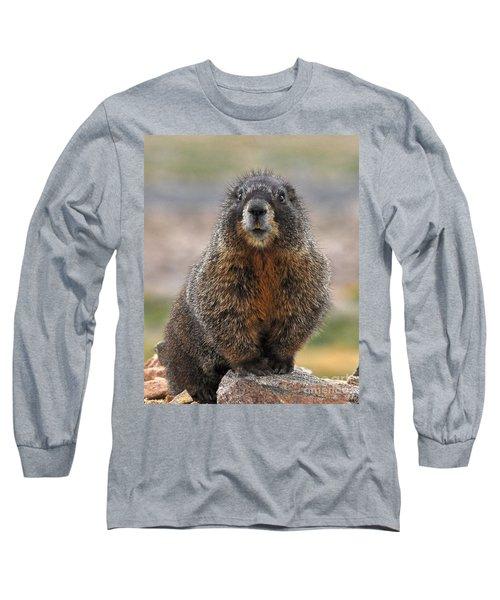 Long Sleeve T-Shirt featuring the photograph Marmot by Mae Wertz