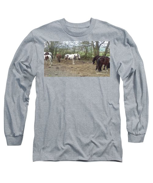 May Hill Ponies 1 Long Sleeve T-Shirt