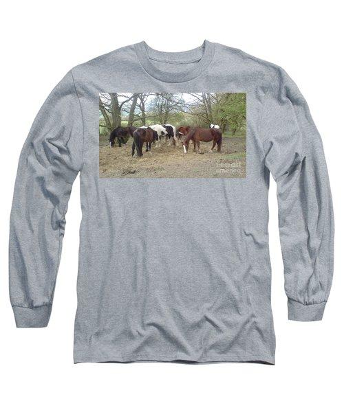 May Hill Ponies 3 Long Sleeve T-Shirt