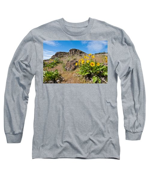 Meadow Of Arrowleaf Balsamroot Long Sleeve T-Shirt by Jeff Goulden
