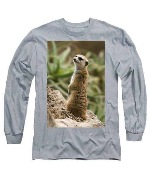 Long Sleeve T-Shirt featuring the photograph Meerkat Mongoose Portrait by David Millenheft