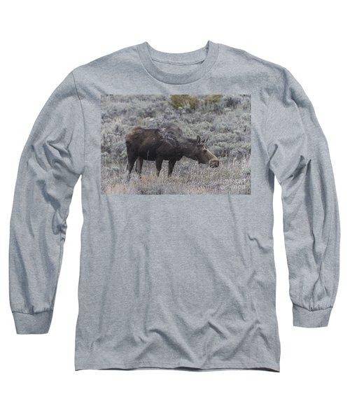 A Grazing Moose Long Sleeve T-Shirt