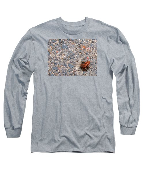 Mount Saint Helen's Frog Froggy Long Sleeve T-Shirt