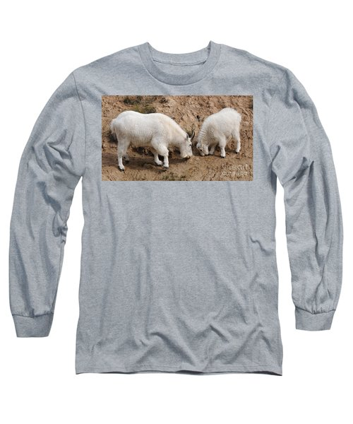 Long Sleeve T-Shirt featuring the photograph Mountain Goats At The Salt Lick by Vivian Christopher