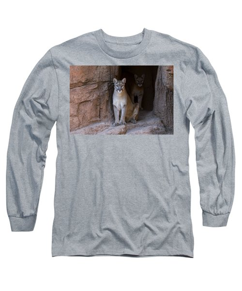 Long Sleeve T-Shirt featuring the photograph Mountain Lion 1 by Arterra Picture Library