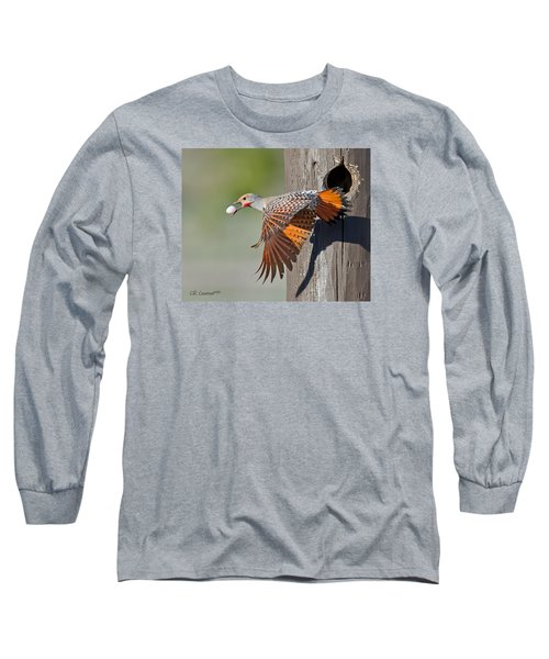 Moving Day Long Sleeve T-Shirt by CR  Courson