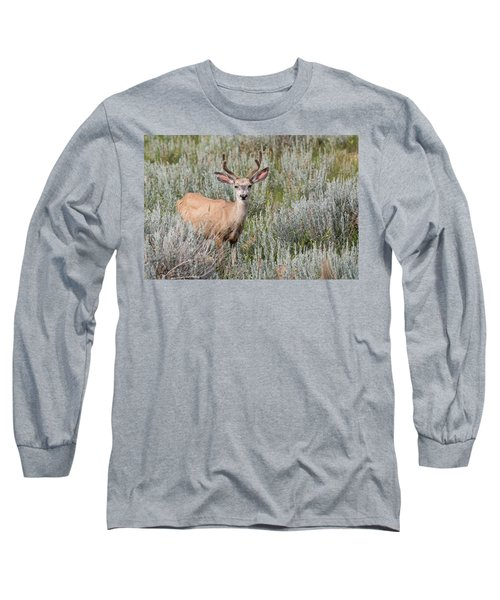 Mule Deer Long Sleeve T-Shirt