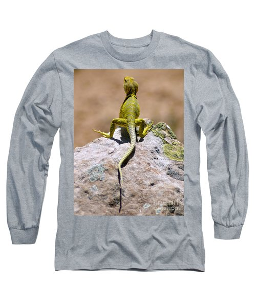 New Photographic Art Print For Sale Lizard Back Ghost Ranch New Mexico Long Sleeve T-Shirt