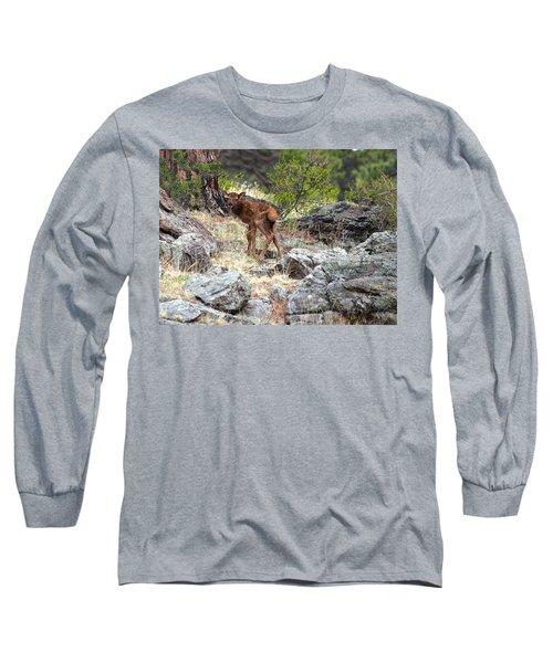 Newborn Elk Calf Long Sleeve T-Shirt