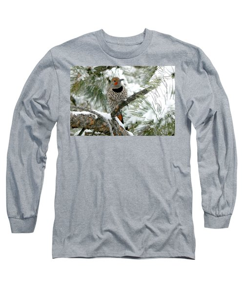 Northern Flicker On Snowy Pine Long Sleeve T-Shirt