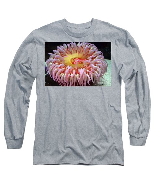 Long Sleeve T-Shirt featuring the photograph Northern Red Anemone by Robert Meanor