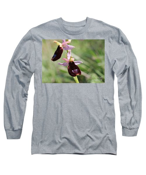 Ophrys Bertolonii Long Sleeve T-Shirt by Antonio Scarpi