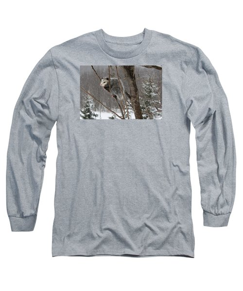Opossum In A Tree Long Sleeve T-Shirt