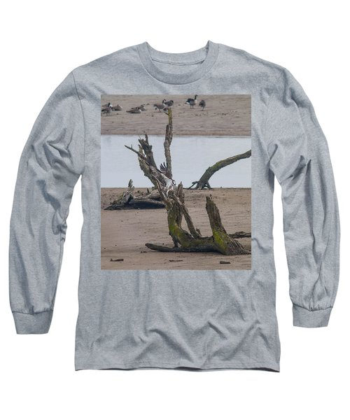 Ospray With Fish Long Sleeve T-Shirt by Brian Williamson