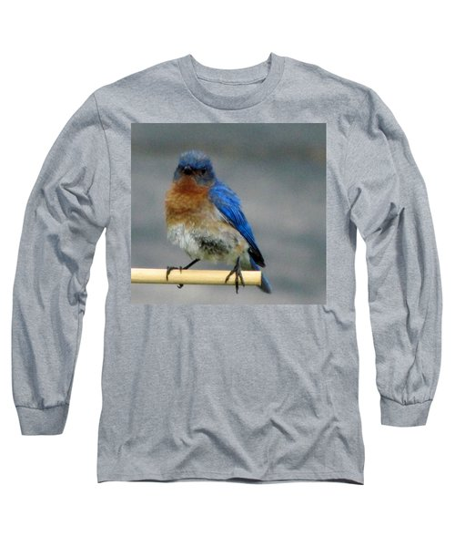 Our Own Mad Bluebird Long Sleeve T-Shirt