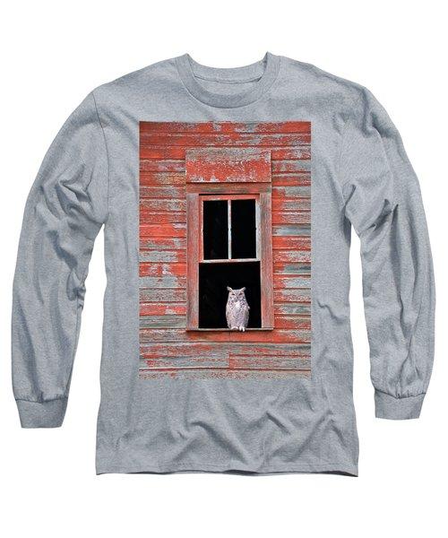 Owl Window Long Sleeve T-Shirt by Leland D Howard
