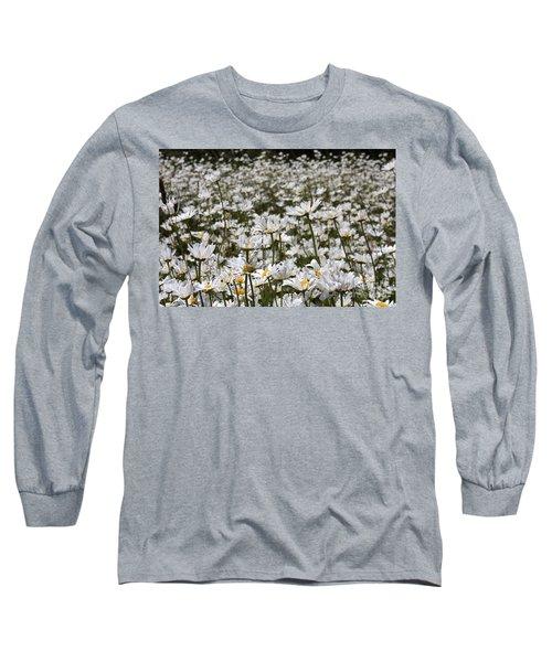 Ox Eye Daisies Long Sleeve T-Shirt