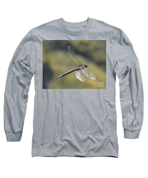Long Sleeve T-Shirt featuring the photograph Paddletail Darner In Flight by Vivian Christopher