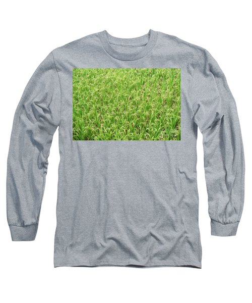 Long Sleeve T-Shirt featuring the photograph Paddy Field by Yew Kwang