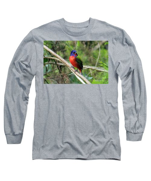 Long Sleeve T-Shirt featuring the photograph Painted Bunting Photo by Meg Rousher