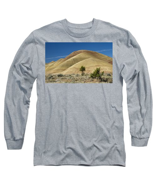 Long Sleeve T-Shirt featuring the photograph Painted Hills by Sonya Lang