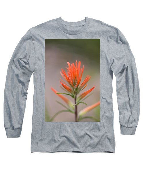 Painterly Paintbrush Long Sleeve T-Shirt