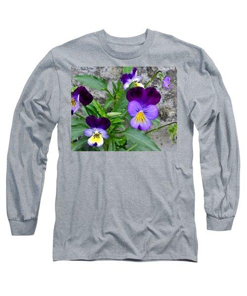 Pansies - Painterly Long Sleeve T-Shirt