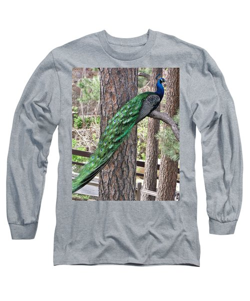 Long Sleeve T-Shirt featuring the photograph Peacock Watches The World by Diane Alexander