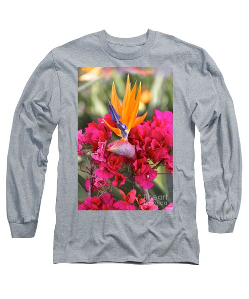 Peeking Through  Long Sleeve T-Shirt