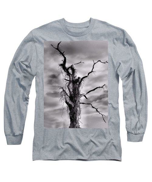 Long Sleeve T-Shirt featuring the photograph Petrified Tree by Rosalie Scanlon