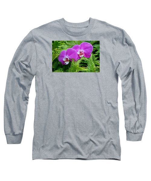 Phalaenopsis Moth Orchids Long Sleeve T-Shirt by Venetia Featherstone-Witty