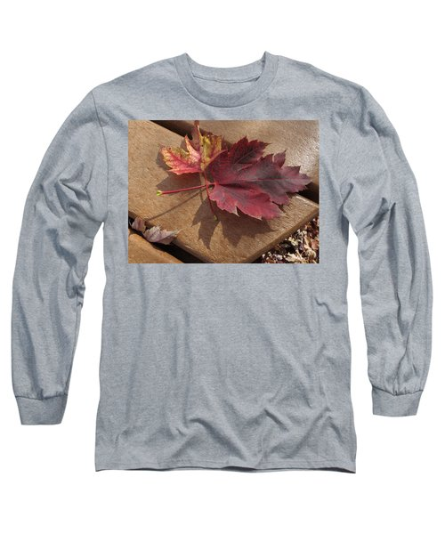 Picnic For Two Long Sleeve T-Shirt