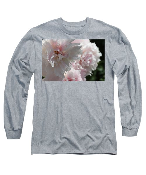 Pink Confection Long Sleeve T-Shirt by Ruth Kamenev