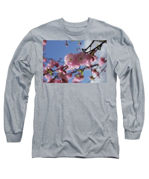 Pink Plum On Sky 2 Long Sleeve T-Shirt