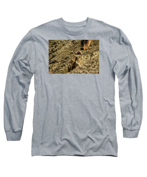 Posing Bighorn Sheep Long Sleeve T-Shirt